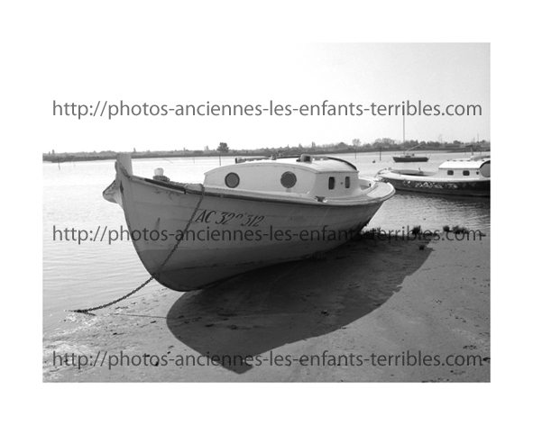 photo 40x50 marge blanche incluse